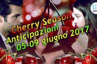 Cherry Season Anticipazioni Settimanali